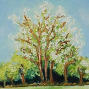 Spring | Ölgemälde 2006-2009, 30x40cm